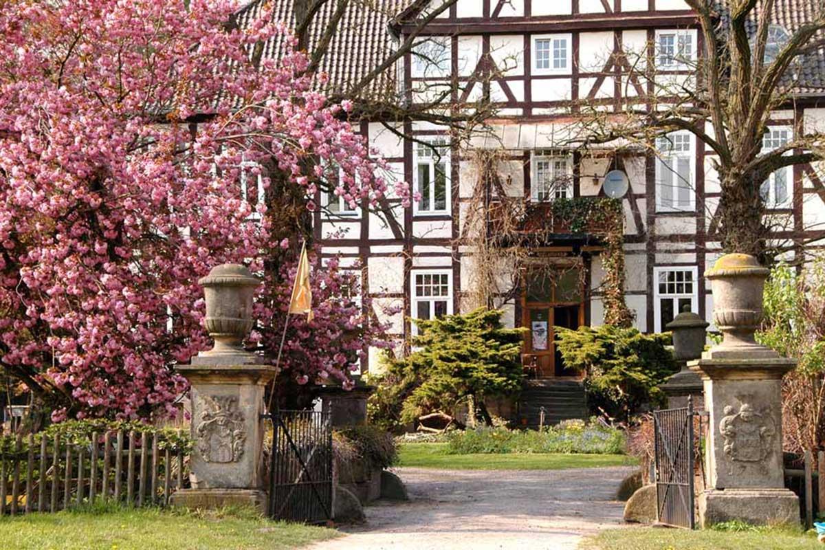 Fachwerkseite Herrenhaus mit Mandelblüte